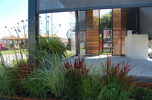 Outdoor Living - Plants