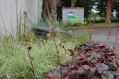 Urban Landscapes HQ - Plants