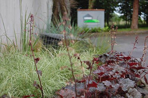 Urban Landscapes HQ - Plants